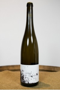 Roterfaden - Riesling 2017