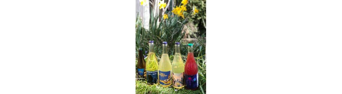 Fruktstereo (Cider)
