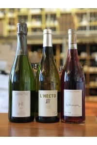 - Survival - Wein-Box Nr.4 - 1 x 3 Bottles 34.90€